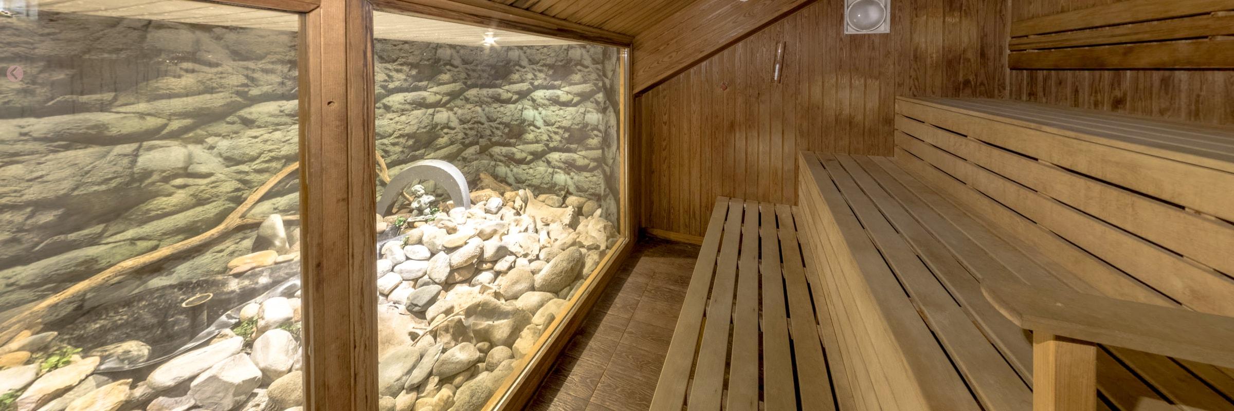 JK Fitness & Wellness Spa — Финландска сауна със зимна градина